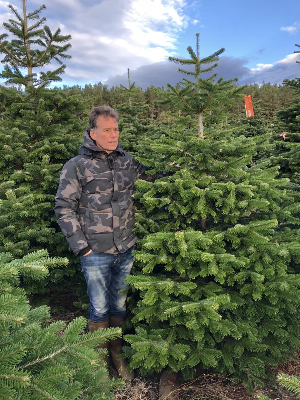 Nordmann Kerstboom 210 240 Cm Xmas3 Nl